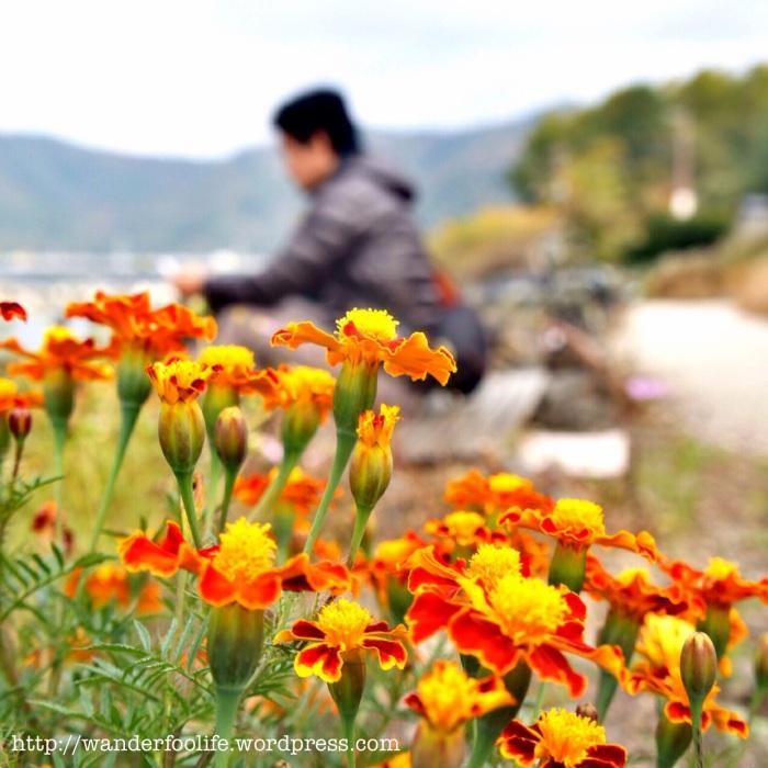 Kawaguchiko Lake.10